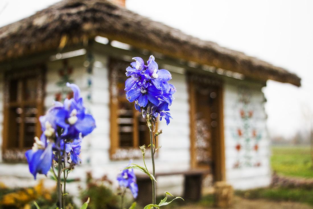 Zalipie - malowana chata znajdująca się przed Domem Malarek