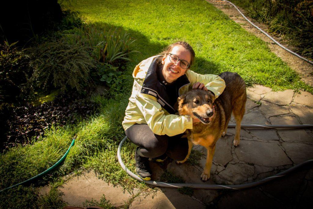 Pies opalówka
