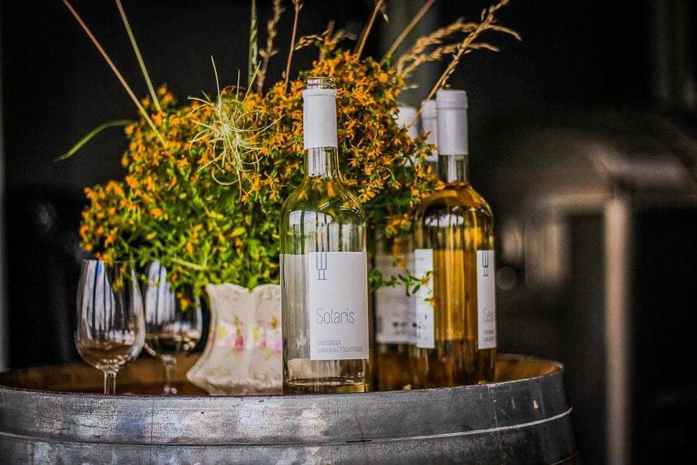 Winnica Chodorowa - degustacja.