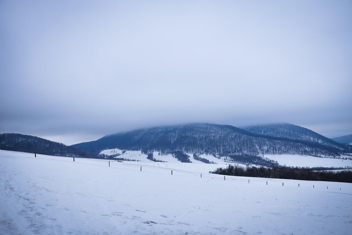Roztaczający się widok na pasma Beskidu Niskiego.