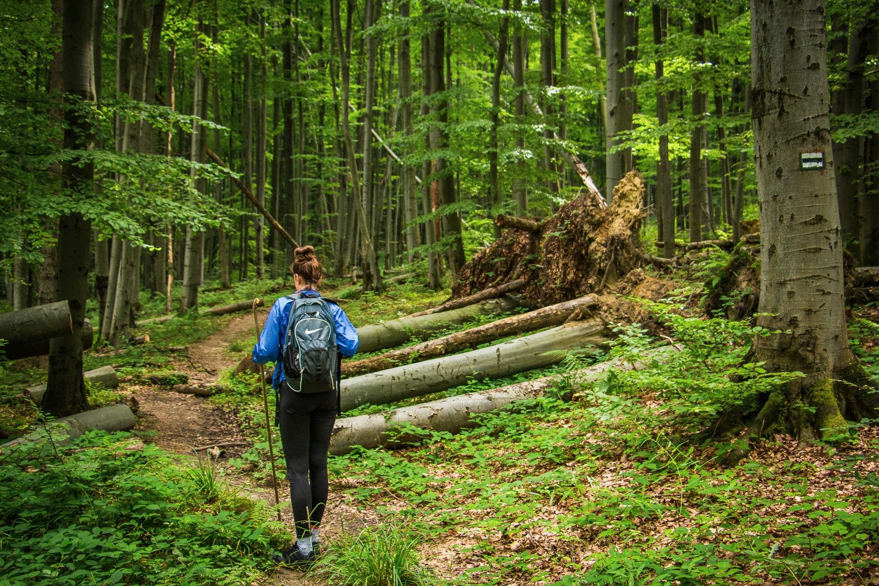 magurski park narodowy czarny szlak