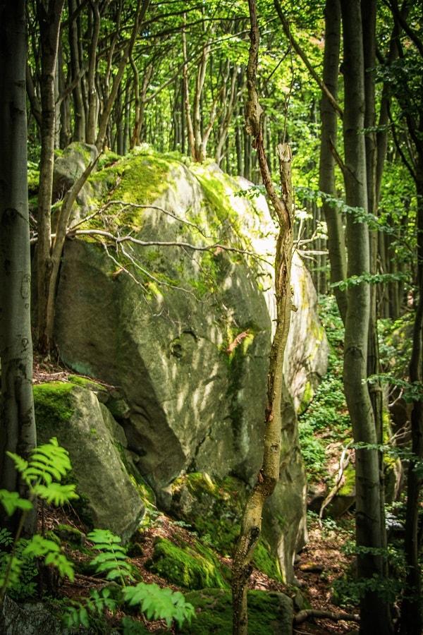 rezerwat skalny kornuty