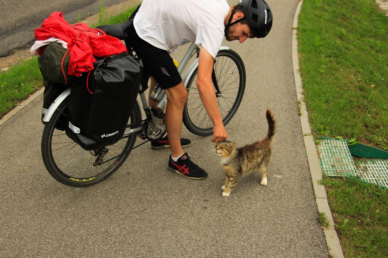 Ten kociak był przeuroczy! Szkoda, że nie mogliśmy go zabrać z nami.