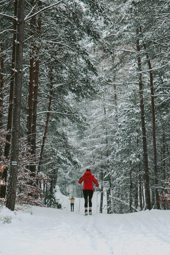 narty biegowe z rzeszowa