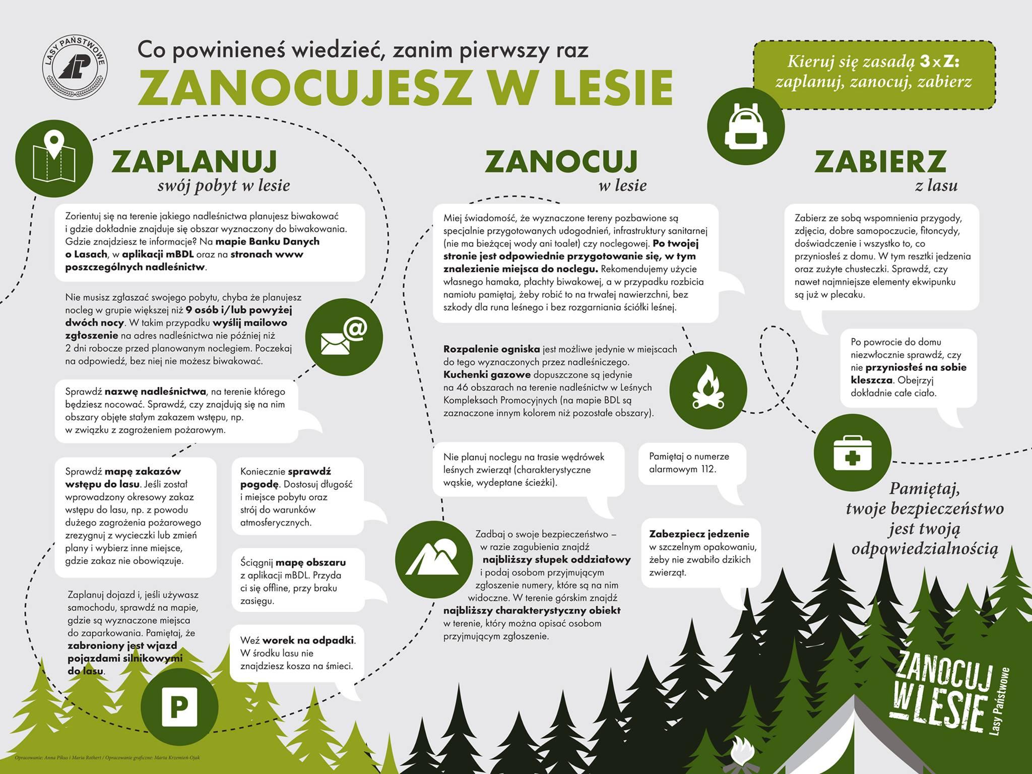 zanocuj w lesie co warto wiedzieć
